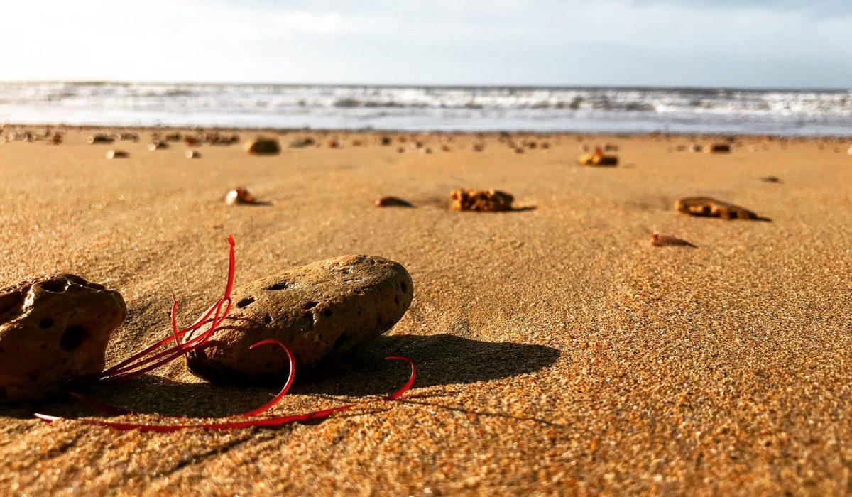 plage-des-lays-notre-dame-de-monts